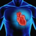 Coronary artery disease (Degerud et al, 2014)